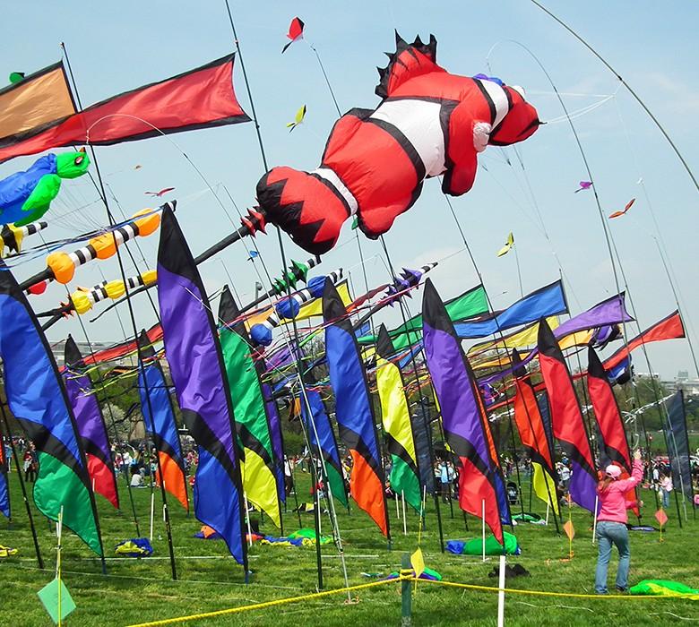 Cherry_Blossom_Kite_Festival