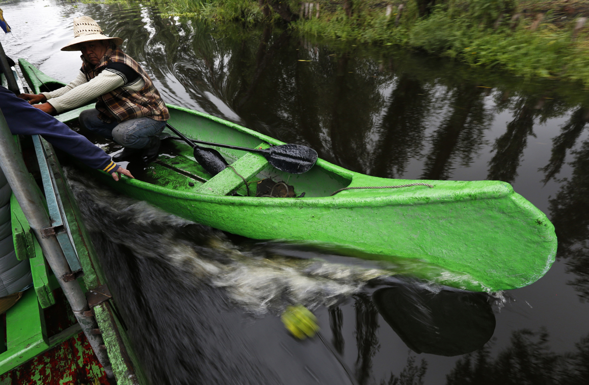 """In this July 13, 2017 photo, a farmer takes advantage of a motorized boat to move faster along the channels of Xochimilco to his floating farm known as a """"chinampa"""" in Mexico City. Xochimilco, on the far southern edge of Mexico City, has been a breadbasket for the Valley of Mexico since before the Aztec Empire, when farmers first created the ÒfloatingÓ islands bound to the shallow canal beds through layers of sediment and willow roots. (AP Photo/Marco Ugarte)"""