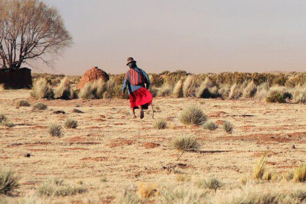web-bolivia-farmer-shutterstock_235882900-jjspring-ai