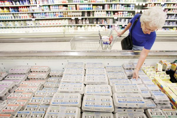 Janet Weaver, of Des Moines, Iowa, shops for eggs at a Dahl's grocery store, Monday, Aug. 23, 2010, in Des Moines, Iowa.  A sign on the cooler said the eggs were not effected by the recall. Two Iowa farms have recalled more than a half-billion eggs linked to as many as 1,300 cases of salmonella poisoning. (AP Photo/Charlie Neibergall) ORG XMIT: IACN104