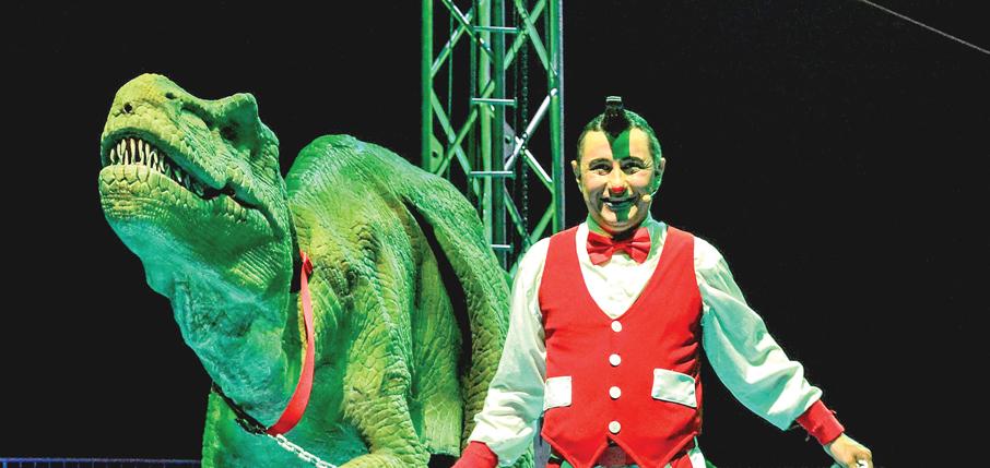 Sumérgase en el mundo  mágico del Cirque Italia