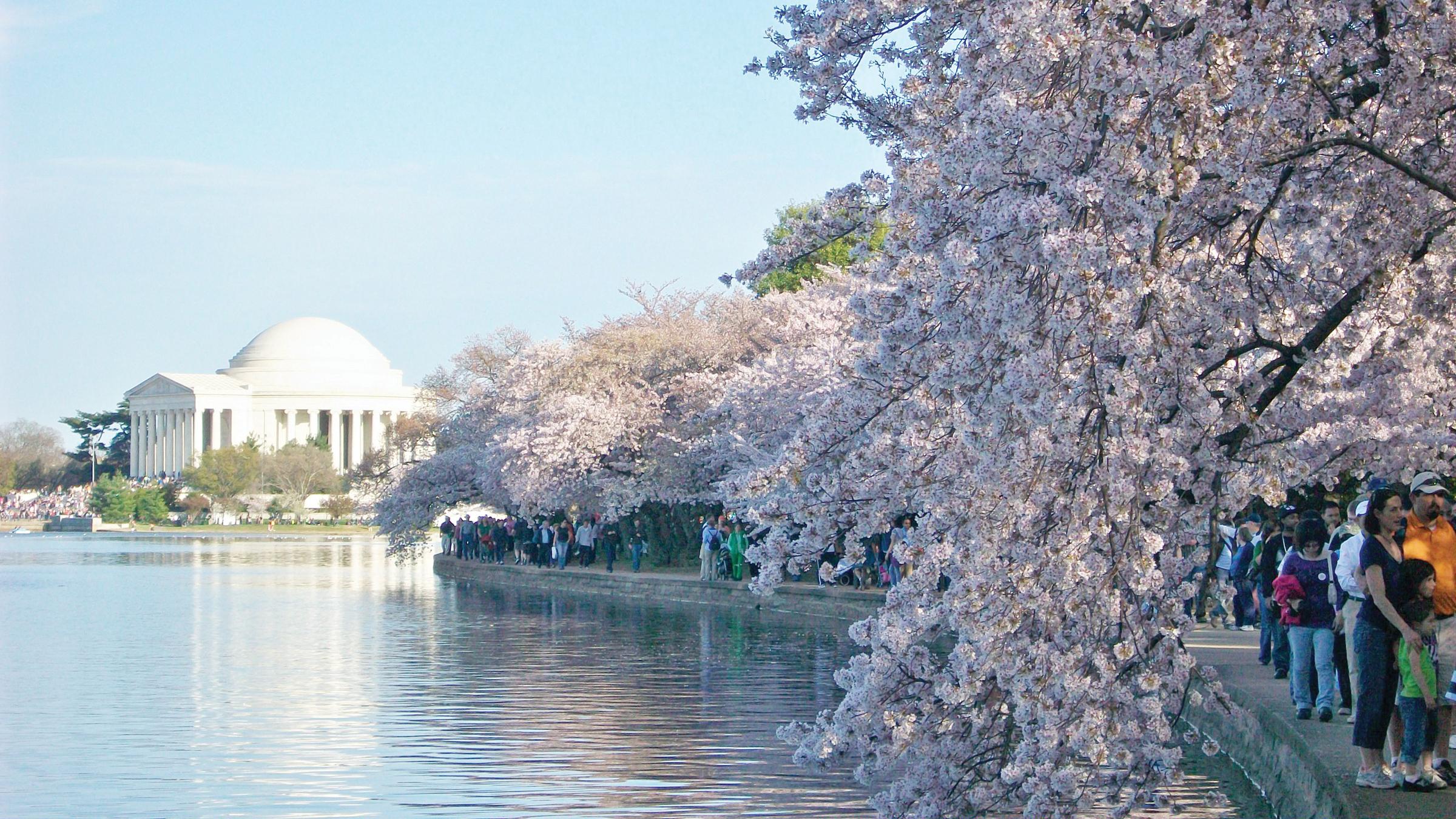 Washington DC rompe récord de turistas