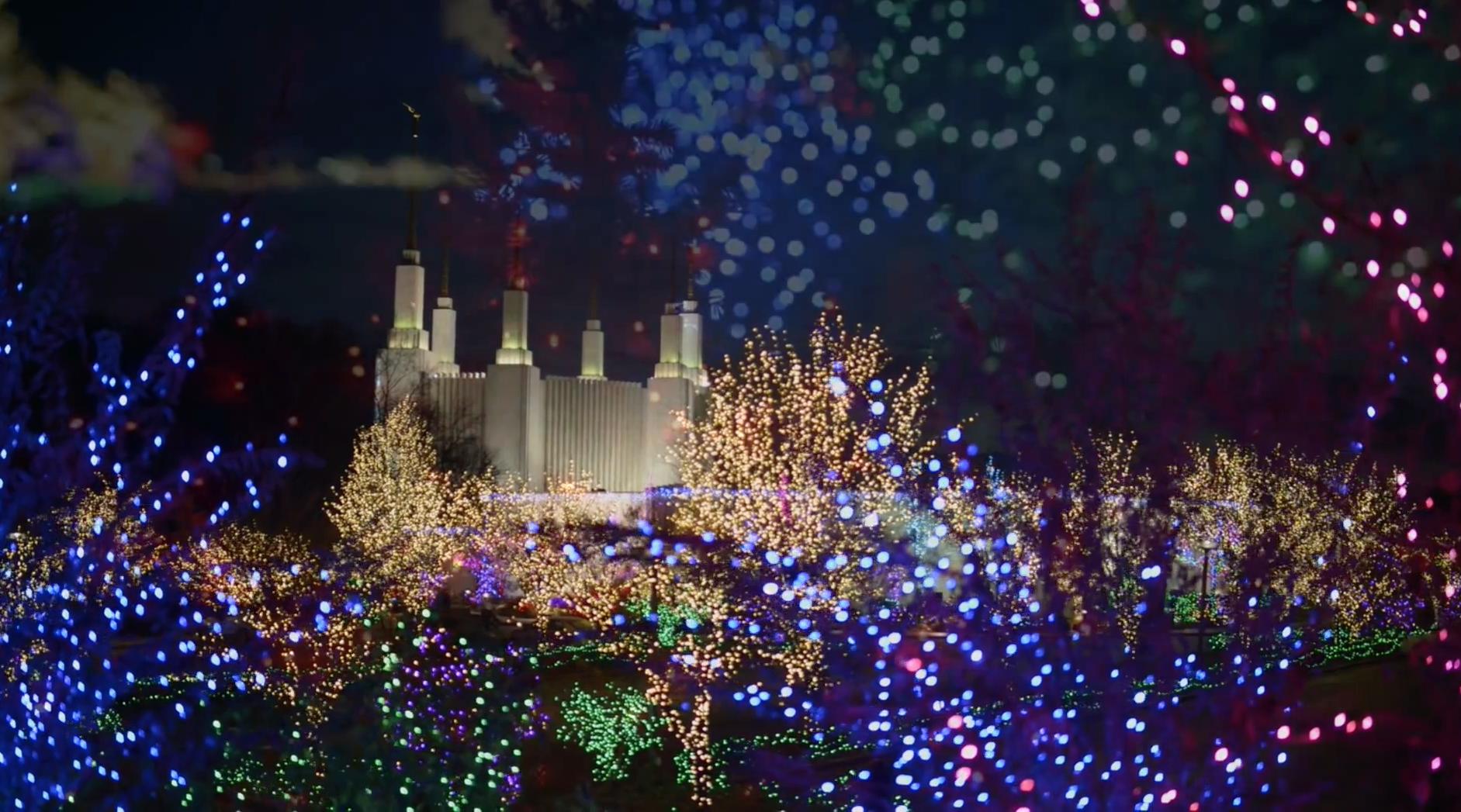 41 Festival Anual de las luces a  partir del 29 de noviembre