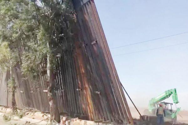 Foto Nota 2-Paneles caen sobre árboles